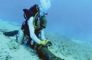 Cara Meletakkan Kabel Optic di Bawah Laut